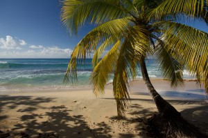 More beautiful beaches of Grenada