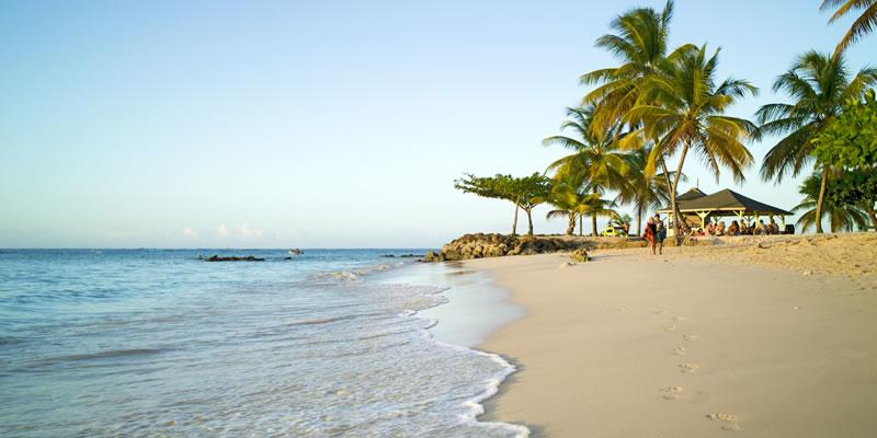Tobago Holidays