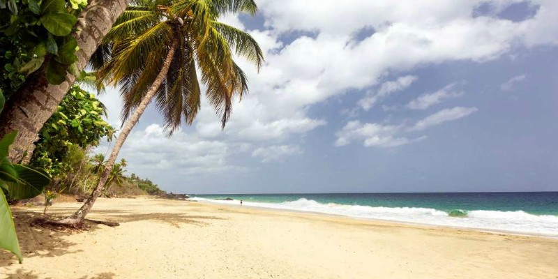 Tobago Beach