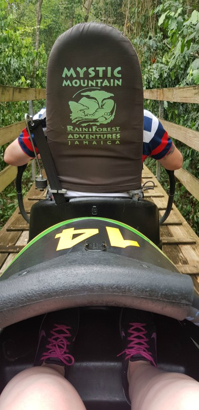 Bobsled Jamaica Excursion