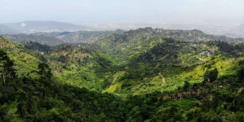 Hillside in Jamaica