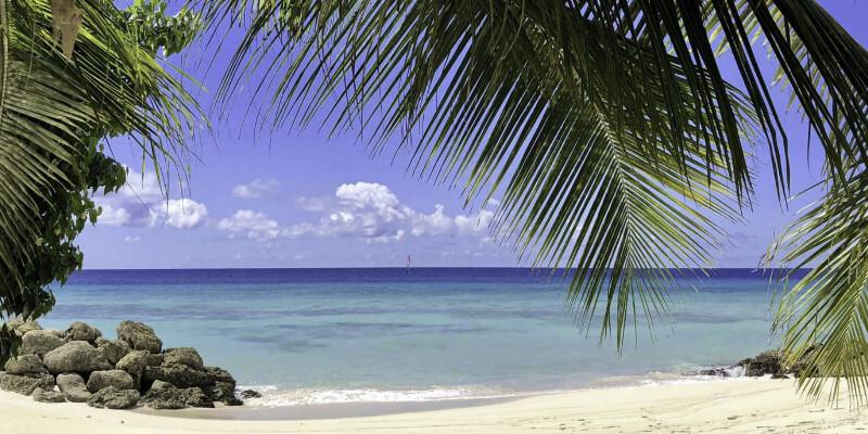 Serene Beachfront Views