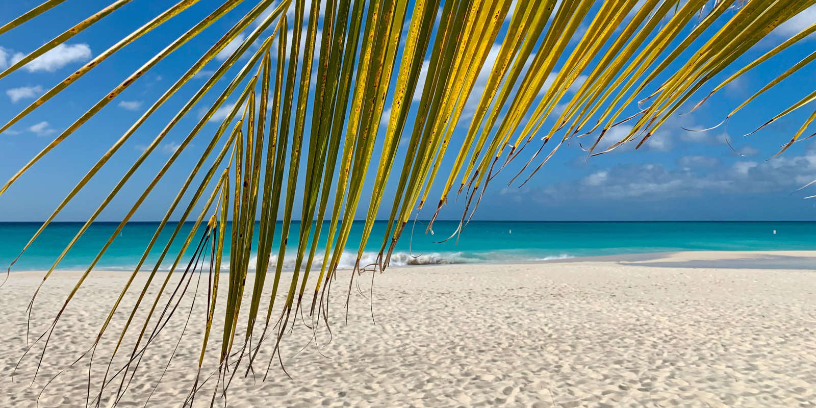 Travel blog: How To Spend a Day in Barbuda: A Whistle-Stop Tour